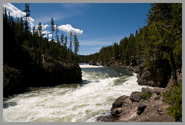 A picture of the Yellowstone River